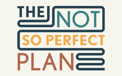 Welcome to The Not So Perfect Plan